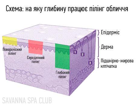 пілінг обличчя - схема дії на шкіру