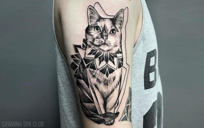 тату на плечі кіт
